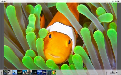 Screen shot 2013-02-18 at 12.54.45